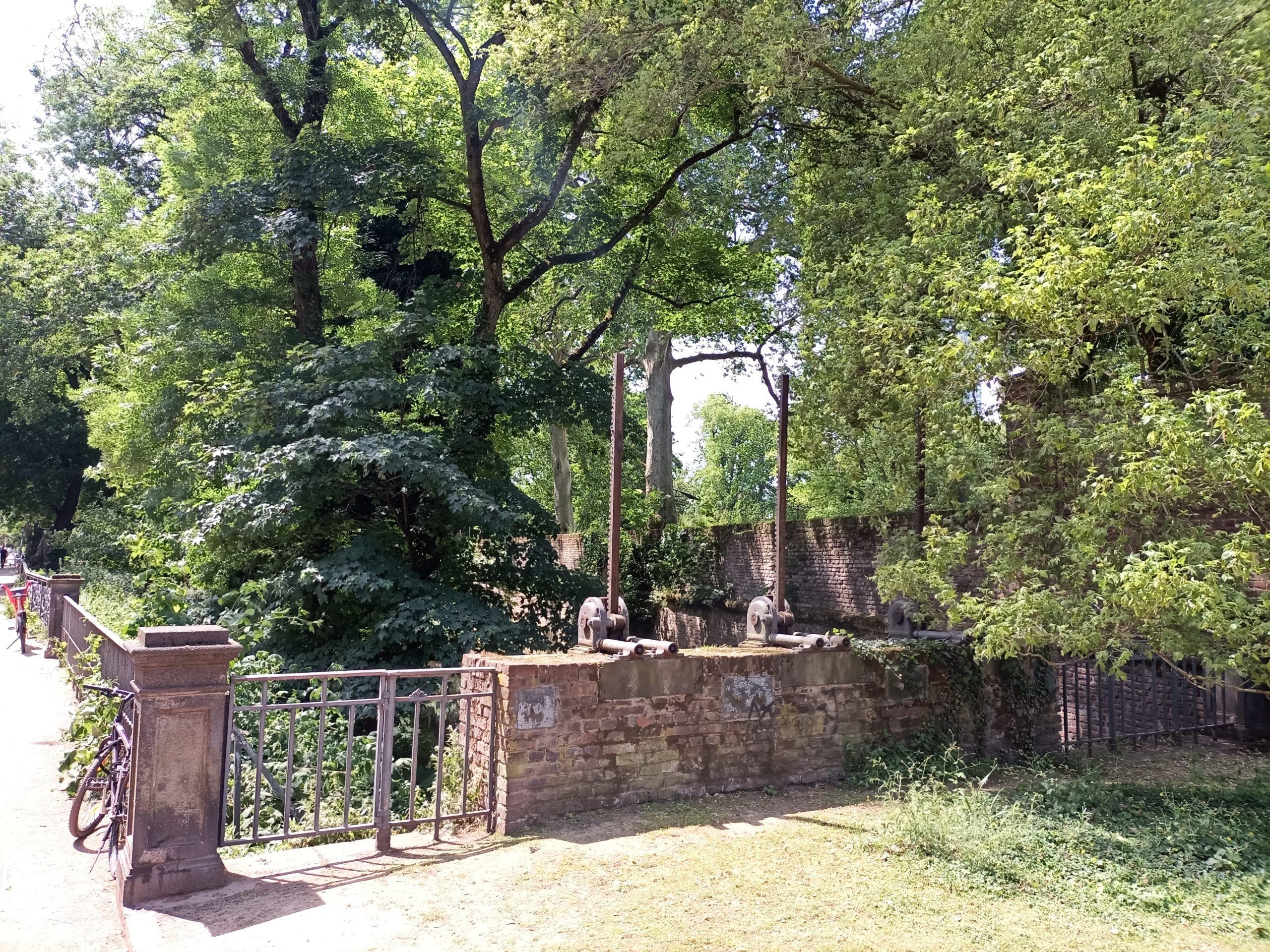 Düssel am Rosengarten